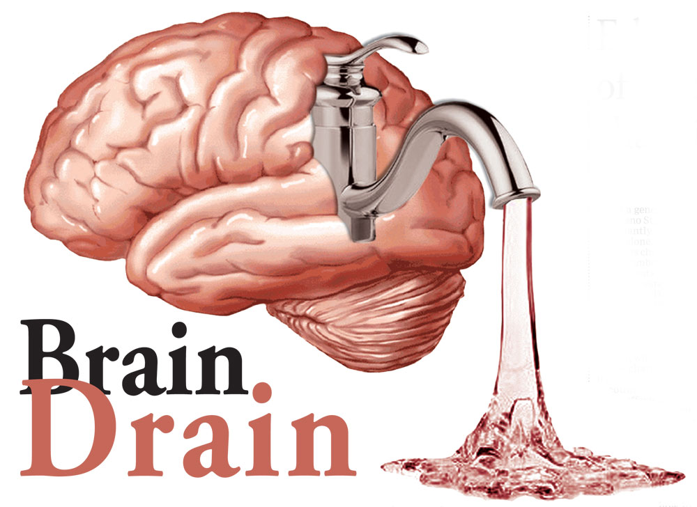 Brain Drain Essay On