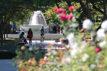 Letter: One tweet does not define the views of Fresno State article thumbnail mt-3