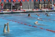 Swimming and Dive Team [video] article thumbnail mt-3