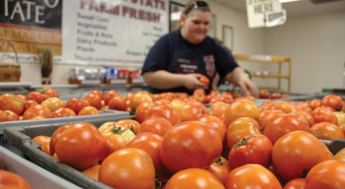 Fresno State Student Cupboard program aims to curb student food insecurity article thumbnail mt-3