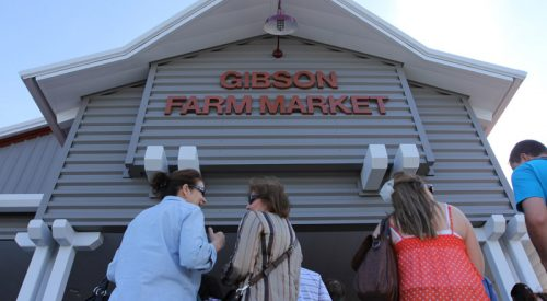Grand opening of the Rue and Gwen Gibson Farm Market [gallery] article thumbnail mt-3