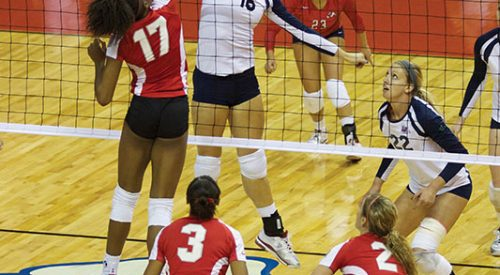 'Dogs sweep Nevada on the road article thumbnail mt-3