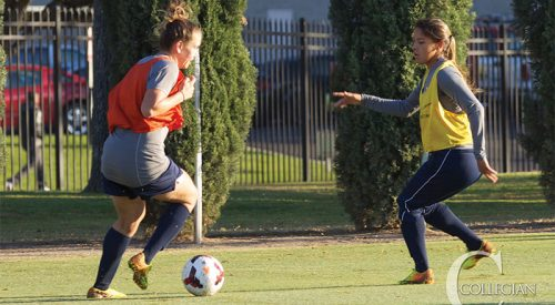 Castain leads 'Dogs to Mountain West Tournament article thumbnail mt-3