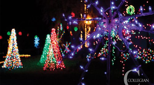 Students light up Christmas Tree Lane article thumbnail mt-3