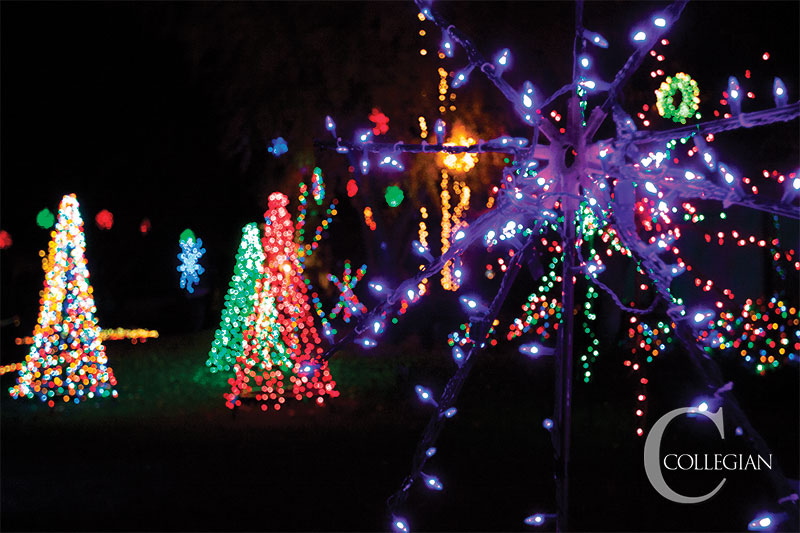 students light up christmas tree lane