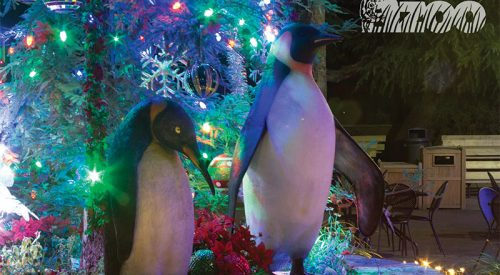 Weekend Wonders: from Christmas to the zoo article thumbnail mt-3