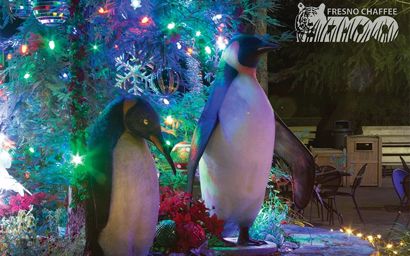 photo by heather davis the fresno chaffee zoo is decorated for zoo lights an event during which visitors can walk through the zoo enjoy hot chocolate and