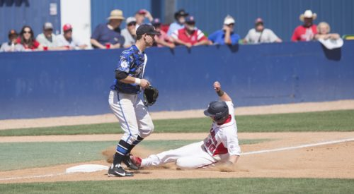 Baseball: 'Dogs soar over Falcons article thumbnail mt-3