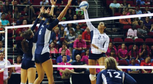 Volleyball: 'Dogs lose five-set heartbreaker article thumbnail mt-3