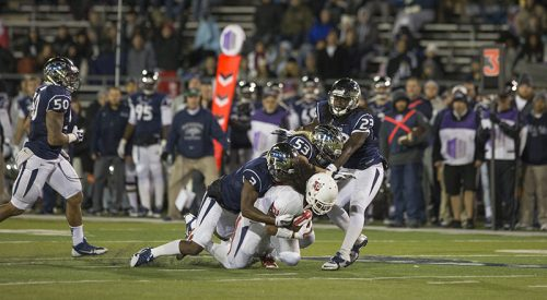 Column: 'Dogs show new life in important win article thumbnail mt-3