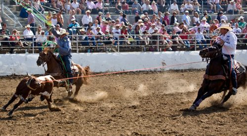 Volunteers make clovis rodeo go round and round article thumbnail mt-3