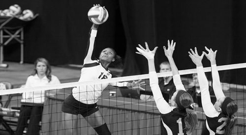 Volleyball: Young 'Dogs optimistic heading into 2015 article thumbnail mt-3