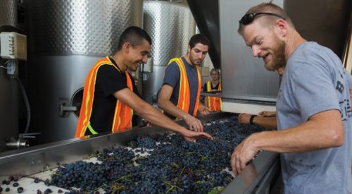 New winemaker looks to prepare students with new approaches article thumbnail mt-3