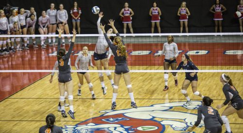 Volleyball: 'Dogs sweep cross-town rival in scrimmage article thumbnail mt-3