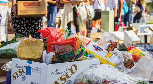 CSU Chancellor extends research on student food insecurity article thumbnail mt-3