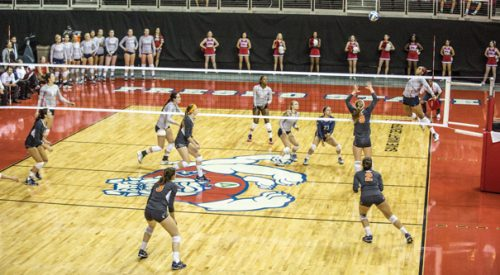 Volleyball: 'Dogs fall in back-and-forth affair with Broncos article thumbnail mt-3