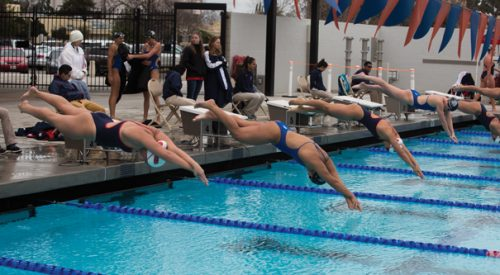 Swimming & Diving: 'Dogs fall to rival Spartans on Senior Day article thumbnail mt-3