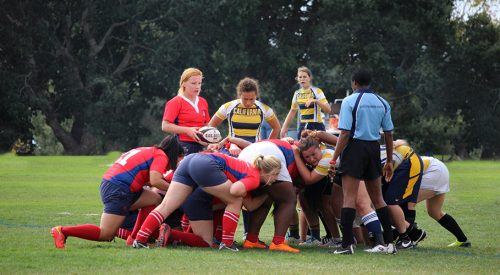 Rugby club to host home games at State article thumbnail mt-3