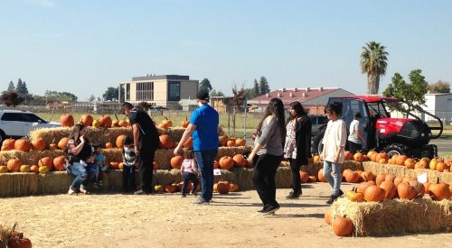 Gibson Market's Fall Festival attracts families article thumbnail mt-3