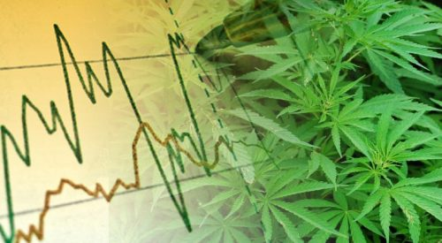 Investments and Edibles article thumbnail mt-3