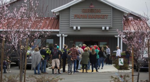 As spring nears, the farm market features plant sales article thumbnail mt-3