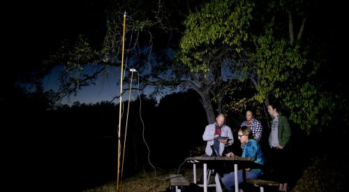 Bat signals — How Fresno State researchers study sights and sounds article thumbnail mt-3