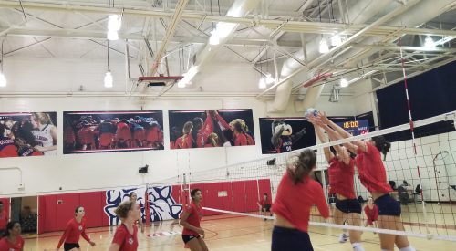'Dogs volleyball set for championship run article thumbnail mt-3