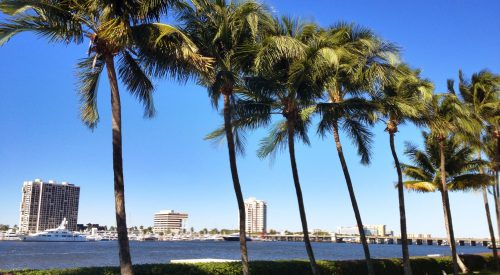 Best Activities for Outdoor Lovers in West Palm Beach article thumbnail mt-3