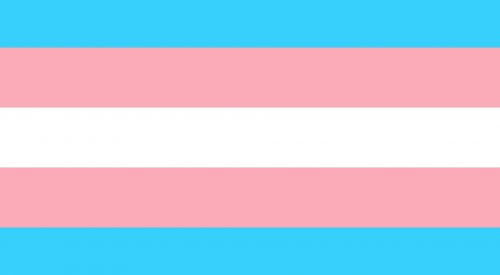 Honoring the lives of transgender individuals article thumbnail mt-3
