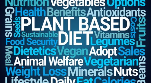 Plant Based Vitamins: What are the Facts? article thumbnail mt-3
