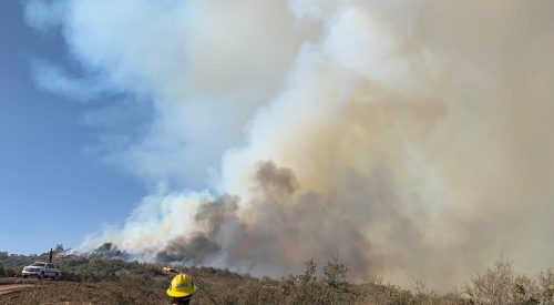 U.S. Forest Service strengthens containment lines for Creek Fire article thumbnail mt-3