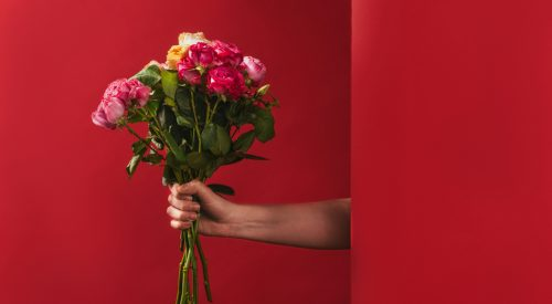 Different Types of Roses article thumbnail mt-3