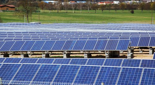 An Overview of Agrivoltaics and Solar Grazing From Green Development LLC article thumbnail mt-2