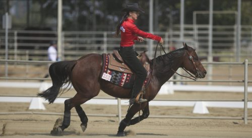 Fresno State equestrian team starts season with two straight wins article thumbnail mt-3